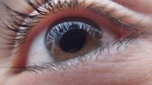 CBD при глаукоме