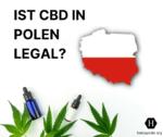 Ist CBD in Polen legal?