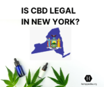Is CBD legal in New York