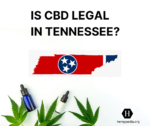 Is CBD legal in Tennessee