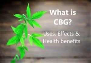 Czym jest CBG